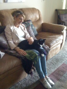 Healing cat Baby helps with spiritual coaching sessions